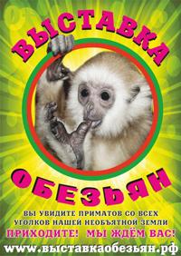 Выставка обезьян 2014 года — в Саратове