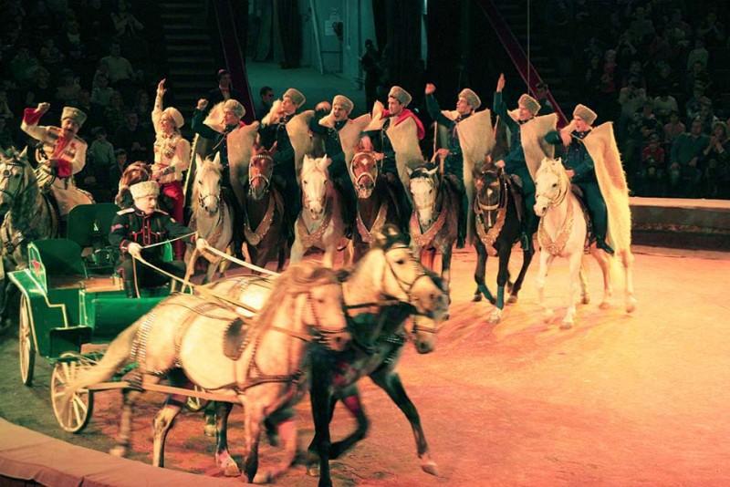 Спешите увидеть «Цирковые легенды»!
