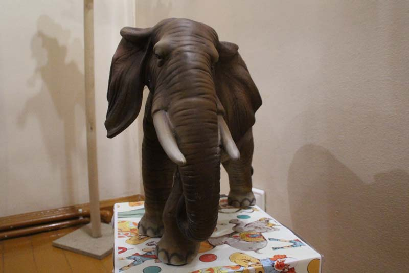 Дом Павла Кузнецова поделился открытием: «Саратов — родина слонов»