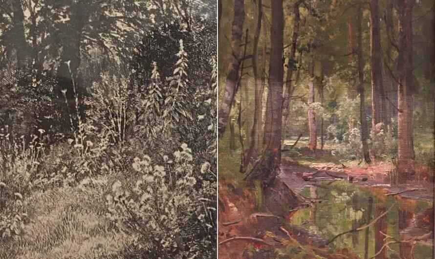 В Радищевском музее — выставка «Русский лес. Шишкин и его современники»